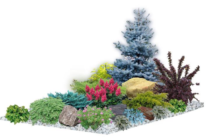 Схема цветника, декоративного водоема, альпийской горки - 1042177
