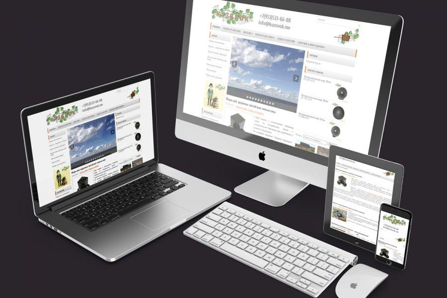 Интернет-магазин 30 000 руб. за 25 дней.