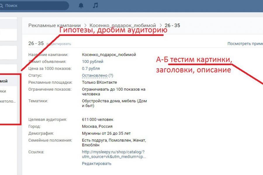Таргетированная реклама в Соц.Медиа 9 000 руб. 7 дней.