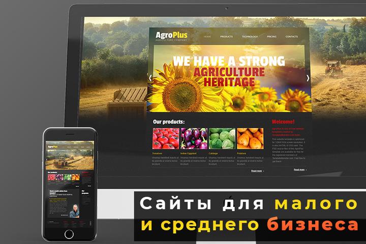 Эффективный сайт за 24 часа - 1152351