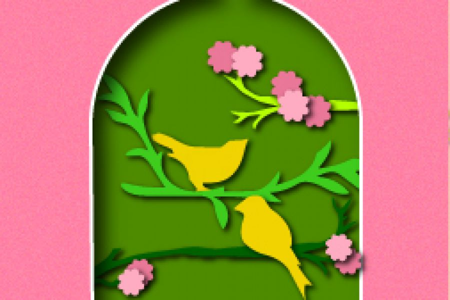 Продаю: free birds