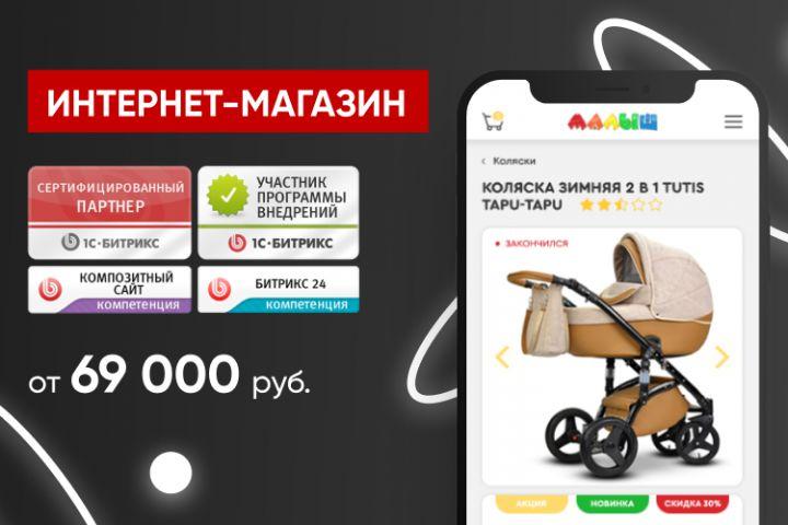 Разработка интернет магазина - 1381046