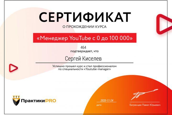 Помогу набрать максимум просмотров и подписчиков на YouTube - 1535687