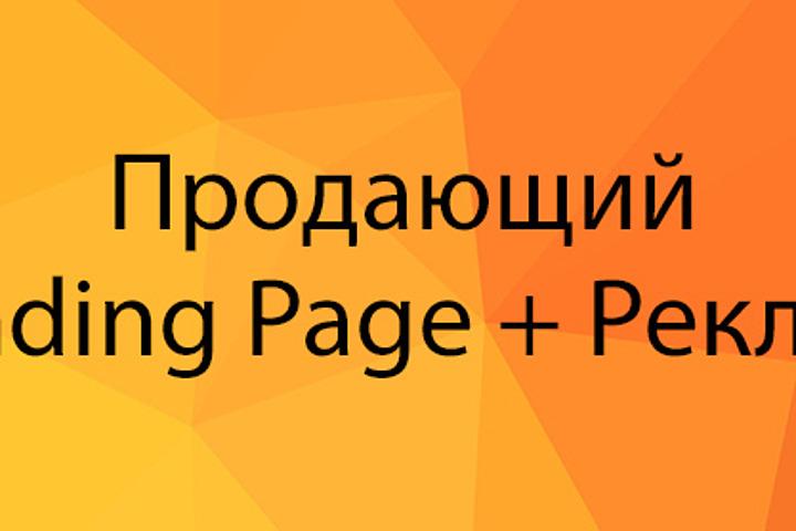 Продающий Landing Page + Реклама - 973968