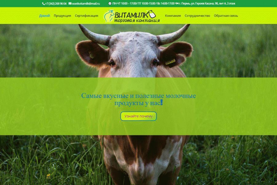 Отзывчивый сайт на любом устройстве 10 000 руб. 5 дней.