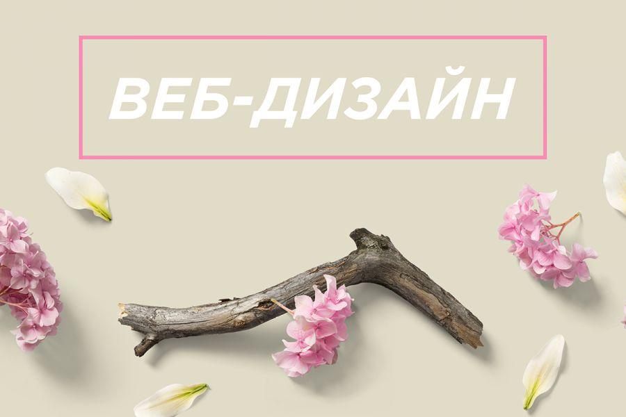 Профессиональный дизайн сайтов 2 400 руб. за 1 день.