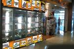 Оформление магазина в ТЦ