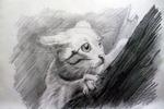 Кошка на дереве,рисунок карандашом