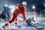 Аксессуары для хоккея от производителей