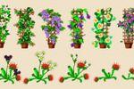 Вьющиеся растения и мухоловка, Цветочная Усадьба