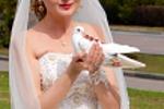 Невеста с голубем