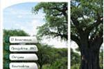 Baobablife