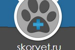 SEO-контент для сайта SKORVET.RU