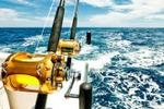 На рыбалку во всеоружии с Vivatao