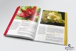 Книга «Все об уходе за растениями»