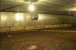Утепление овощехранилища – сохраним урожай с Экотермиксом!