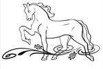 Конь на лугу.Horse in a meadow