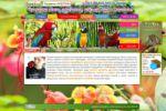 Сайт по продаже попугаев