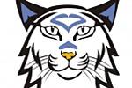 Разработка эмблемы для хоккейного клуба.