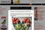 Весенние салаты: вкусные «цветочные» идеи