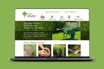 Эко-альянс комплексное озеленение