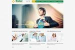 Перевод RU-EN сайта компании (ОАЭ) - сфера услуг