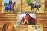 Листовка частный конно спортивный клуб