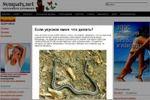 Если укусила змея: Что делать?
