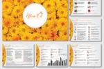 Дизайн презентации для магазина цветов «Цвет'Ок»