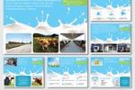 Дизайн презентации о компании «Вакинское Агро»