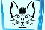 Аватар для группы с кошками