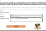 Программа авторазмещения отзывов о ветеринарной клинике