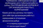 Перевод презентации для откормочной площадки КРС