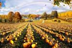 """Коллаж """"Осень"""""""