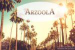 Баннер на сайт Arzoola