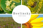 Тексты на английском для сайта компании Beelinsky