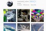 Instagram, аккаунт красивых фото. Привлечение 15 000 живых подп