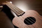 Acoustic & Fun Ukulele