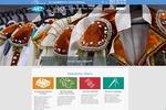 Разработка сайта Сеть химчисток на 1С-Битрикс