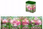 Упаковка подарочного чая Hilltop Музыкальная шкатулка
