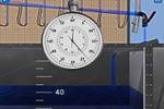 Виртуальная лабораторная работа «Диаграмма Д.Бернулли»
