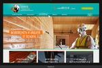 """Сайт компании """"Солардъ"""". Пожарные услуги и товары (2015)"""