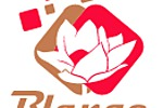 Яндекс Директ цветочного интернет магазина blange.ru