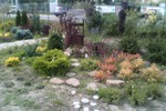 Декоративая- смешанная группа Садовый центр Палисад