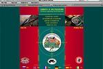 2004. Сафари и экспедиции