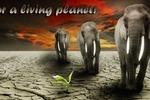 За живую планету (баннер)