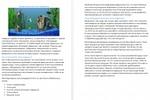 Статья о профессиональной чистке аквариума