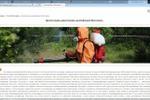 SEO текст для информационного портала: Дезинсекция, дератизация,