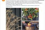 Пост_Тренды садового дизайна, часть 1.