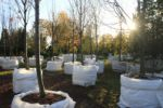 Видеосъемка садового центра на Рублевке